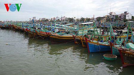 Cac dia phuong tai Quang Ninh chu dong ung pho voi bao so 2 - Anh 1