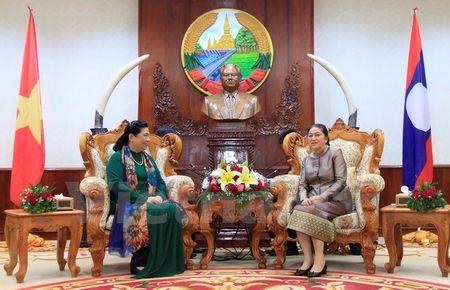 Lanh dao Lao tiep Doan dai bieu cap cao Dang, Nha nuoc Viet Nam - Anh 2