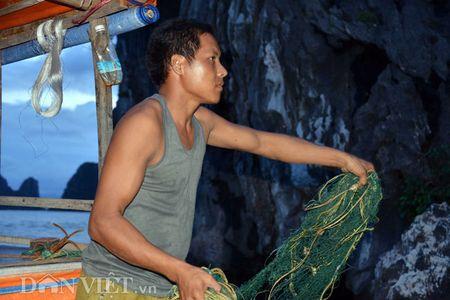 Tan mat thay cao thu san con cu ky nuc tieng o vinh Bai Tu Long - Anh 5