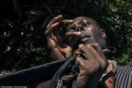 Le truong thanh day dau don tai bo lac o Senegal - Anh 2