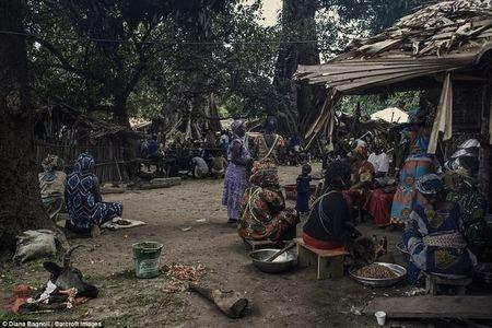 Le truong thanh day dau don tai bo lac o Senegal - Anh 7