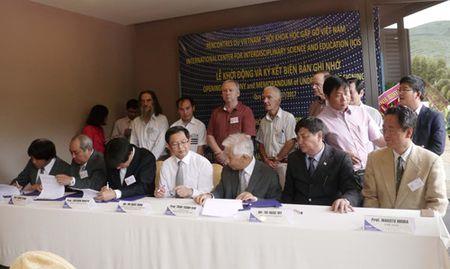 Bon giao su Nhat Ban tham gia nhom Vat ly Neutrino Viet Nam - Anh 2