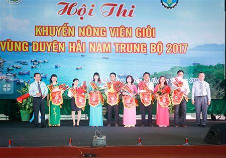 Hoi thi khuyen nong gioi vung Nam Trung Bo - Anh 2