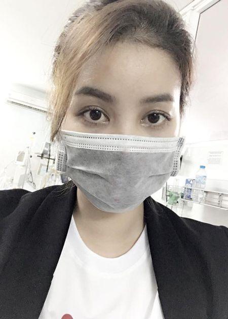 Hot Face sao Viet 24h: Elly Tran hoa Hang Nga goi cam - Anh 9