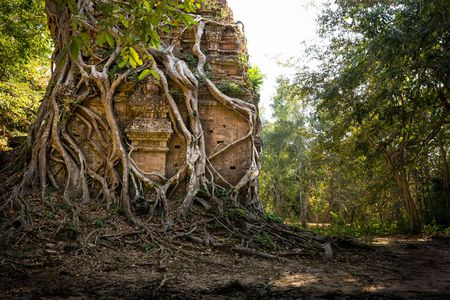 Kham pha Di san the gioi moi toanh cua Campuchia - Anh 7