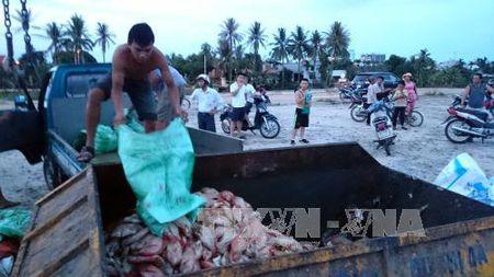 Da Nang: 60 tan ca long tren song Co Co chet bat thuong - Anh 3