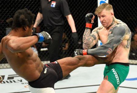 Cu knock-out sieu la tren san dau UFC - Anh 3