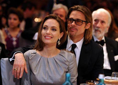Angelina Jolie - Brad Pitt bi mat gap nhau o cua hang thu cung - Anh 1