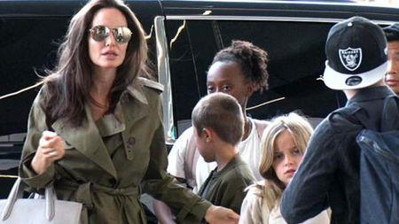 Angelina Jolie - Brad Pitt bi mat gap nhau o cua hang thu cung - Anh 2