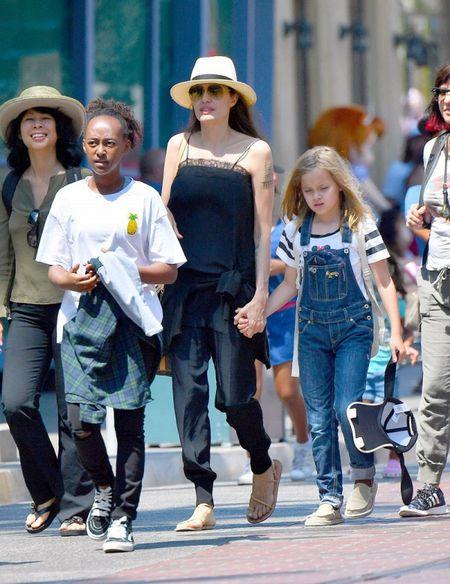 Angelina Jolie - Brad Pitt bi mat gap nhau o cua hang thu cung - Anh 3
