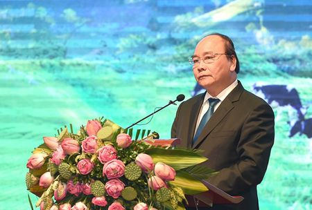 Su tran tro cua Thu tuong - Anh 1