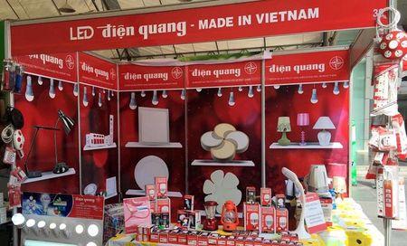 Qua con 'giong to', co phieu Dien Quang dan hoi phuc? - Anh 2