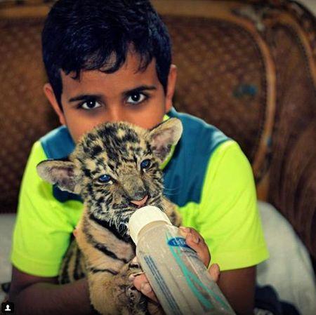 Cau am Dubai khang dinh ten tuoi trong gioi con nha giau - Anh 7
