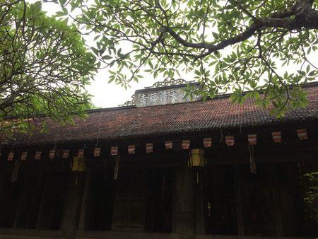 Chon Con Son co kinh va Dao Co yen binh de kham pha xu Dong - Anh 3