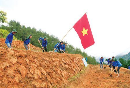 Dau kho co thanh nien - Bai 5: Mua vang tren canh dong ma - Anh 1
