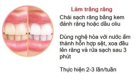 Khong chi tri ran da, day con la 'than duoc song' chong lai te bao ung thu - Anh 2