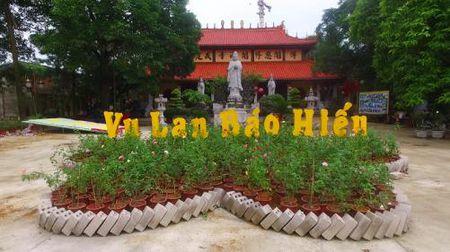Ha Noi: 'Le hoi hoa hong tri an cha me' nhan mua Vu Lan - Anh 4