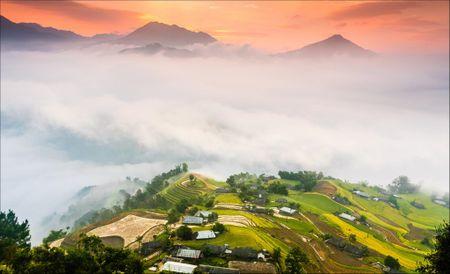Tay Bac mua lua chin ruc ro sac vang trong anh 'Dau an Viet Nam' - Anh 4
