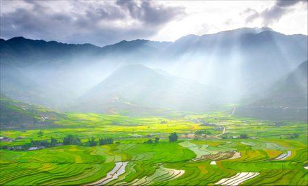 Tay Bac mua lua chin ruc ro sac vang trong anh 'Dau an Viet Nam' - Anh 5