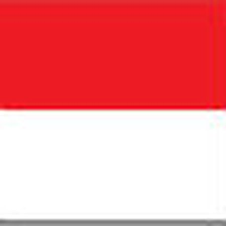 Chi tiet U22 Indonesia - U22 Philippines: Giu vung thanh qua (KT) - Anh 1