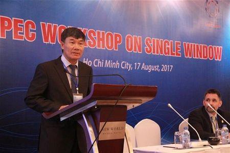 APEC: Mo hinh ly tuong cho he thong mot cua - Anh 2