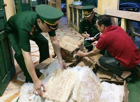Van chuyen trai phep noi tang dong vat qua bien gioi - Anh 1