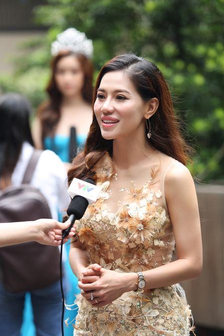 Vi sao Do My Linh duoc chon thi 'Hoa hau The gioi 2017'? - Anh 2