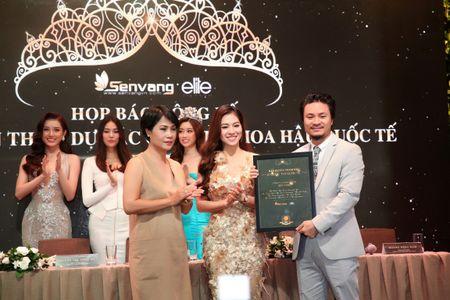 Vi sao Do My Linh duoc chon thi 'Hoa hau The gioi 2017'? - Anh 3