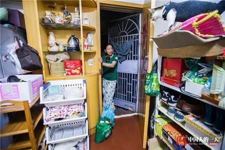 Cam dong tam long 'lao tien boi' cuu mang 39 chu meo hoang suot 17 nam qua - Anh 20