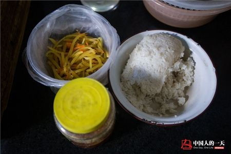 Cam dong tam long 'lao tien boi' cuu mang 39 chu meo hoang suot 17 nam qua - Anh 5
