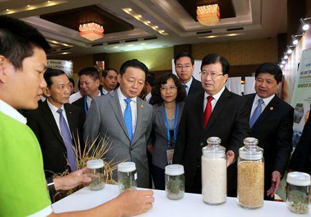 Viet Nam san sang phoi hop voi cac thanh vien APEC bao dam an ninh luong thuc - Anh 3