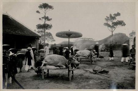 Tan muc le te dan Nam Giao nam 1933 o kinh thanh Hue - Anh 13