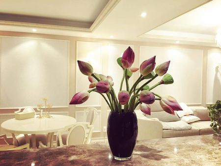 Tro tai cam hoa cuc kheo, HH Pham Huong goi y nhung cach trang tri nha tuyet dep - Anh 5