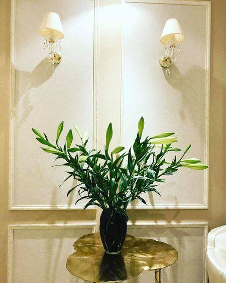Tro tai cam hoa cuc kheo, HH Pham Huong goi y nhung cach trang tri nha tuyet dep - Anh 6