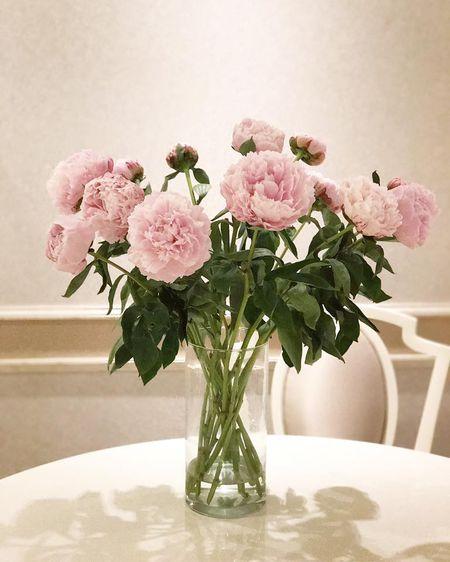 Tro tai cam hoa cuc kheo, HH Pham Huong goi y nhung cach trang tri nha tuyet dep - Anh 8