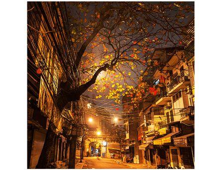 Goc nho Ha Noi qua ong kinh cua NSNA Xuan Chinh - Anh 3