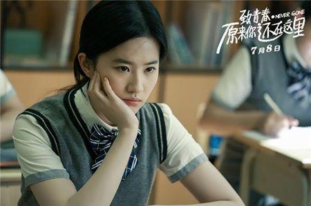 Luu Diec Phi: 'Than tien ty ty' hay 'binh hoa di dong' thua sac kem tai? - Anh 10