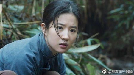 Luu Diec Phi: 'Than tien ty ty' hay 'binh hoa di dong' thua sac kem tai? - Anh 13