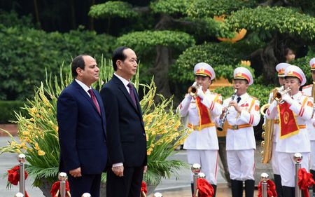 Chu tich nuoc Tran Dai Quang chu tri le don Tong thong Ai Cap - Anh 5