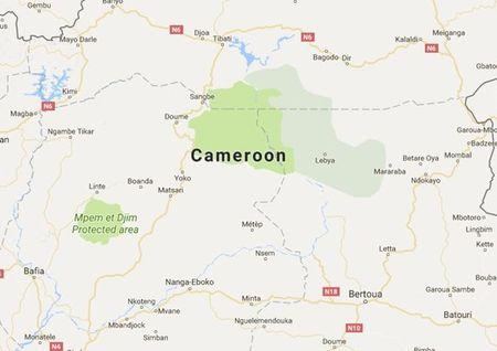 It nhat 6 nguoi thiet mang sau 2 vu tan cong tai Cameroon - Anh 1