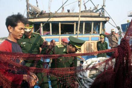 Ngu dan Quang Nam to bi tau Trung Quoc quay pha - Anh 1