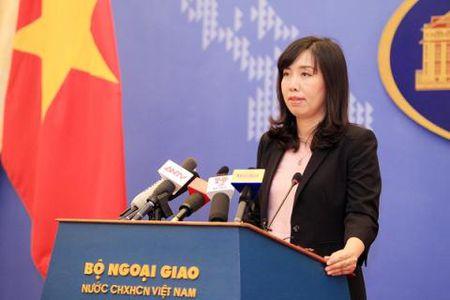 Viet Nam len tieng ve ke hoach My tuan tra Bien Dong - Anh 1