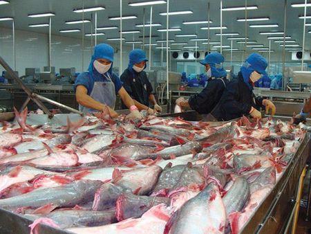 HSC: Xuat khau sang My sut manh, doanh thu quy III cua Vinh Hoan se kem di - Anh 1