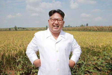 My tim cach phong toa tai san cua ong Kim Jong-un - Anh 1