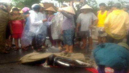 Nam Dinh: Nguoi phu nu di xe dap bi set danh tu vong - Anh 1