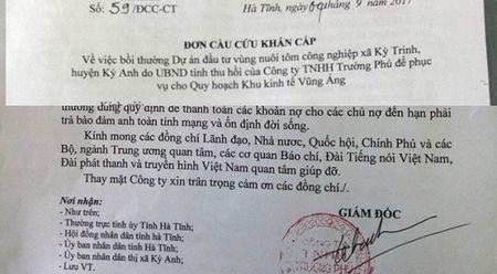 Ha Tinh: Doanh nghiep cau cuu khan cap vi chinh quyen cham boi thuong tai san - Anh 1