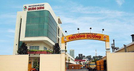 Sau soat xet, loi nhuan Nuoc giai khat Chuong Duong chuyen tu lai sang lo - Anh 1