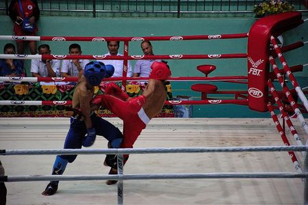 Khai mac Giai Vo dich toan quoc mon Kick Boxing nam 2017 - Anh 10