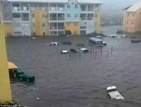 Khung khiep sieu bao Irma xoa trang ca hon dao o Caribe - Anh 2