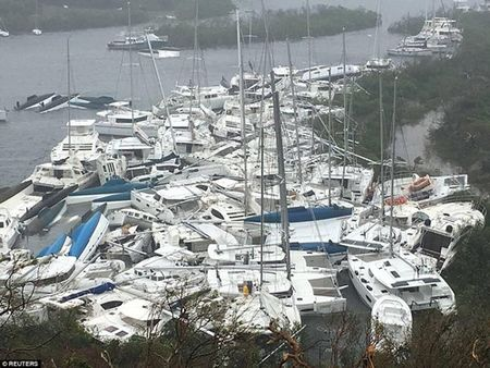 Khung khiep sieu bao Irma xoa trang ca hon dao o Caribe - Anh 3